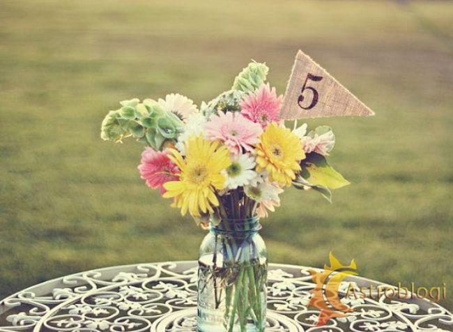დაბადების რიცხვი – 5