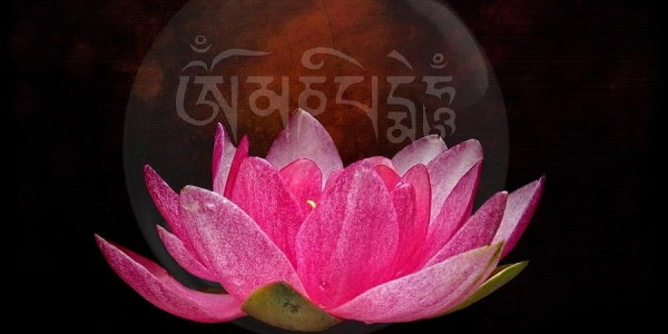 mantra-lotus-h-kopp-delaney