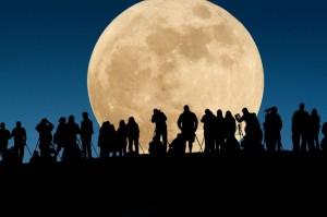 მთვარე წამყვანი (ძირითადი) მოთხოვნილება